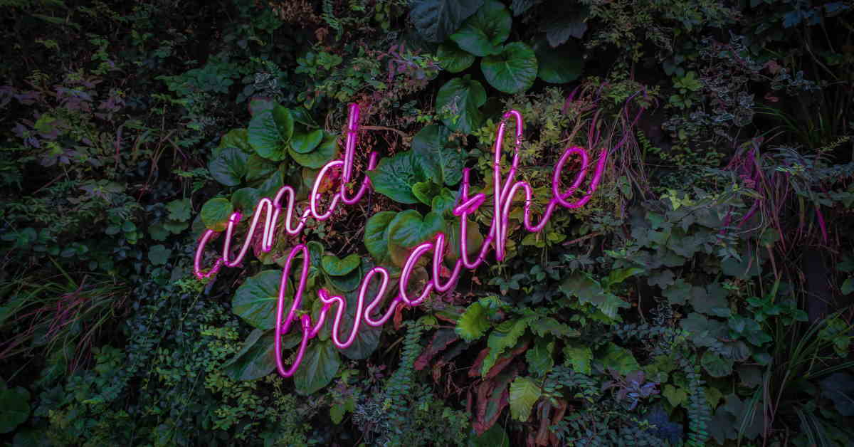wall of green plants with neon sign reading 'just breathe'