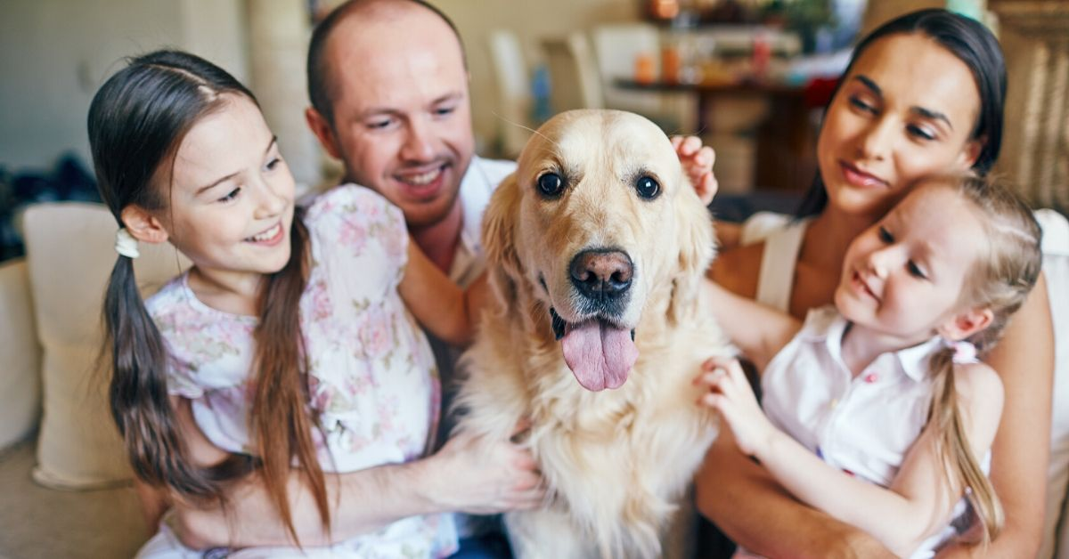 photo of a family and dog on a couch